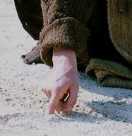 writing_sand